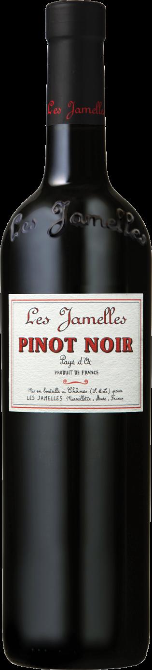 2019 Pinot Noir Pays d´Oc