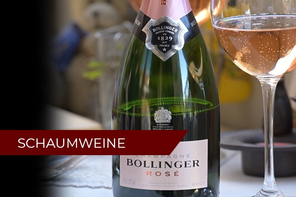 Schaumweine Weinseminar | November 2021